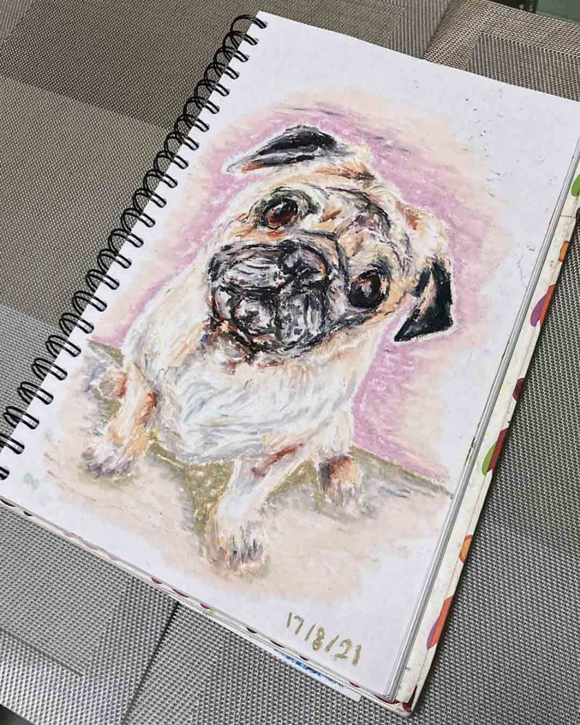 Oil Pastel Still Life Drawing - Cute Pug Portrait (2021), Artist Celine Chia